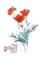 Product: Poppies note cards