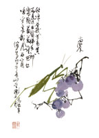 Product: Praying Mantis on Grapes note cards
