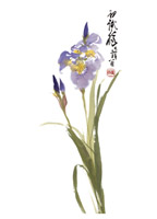 Product: Iris note cards